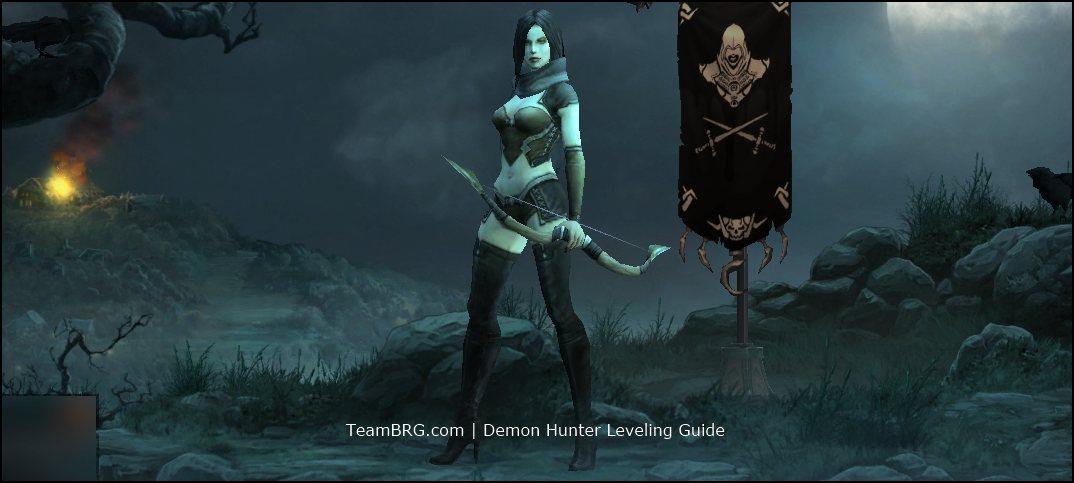 Hunter Leveling Guide